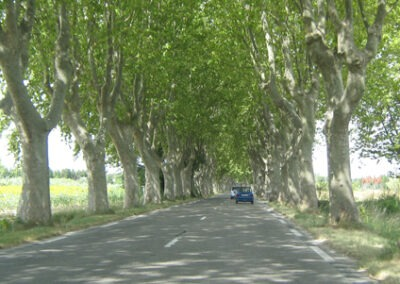 How Safe Are You On French Roads?